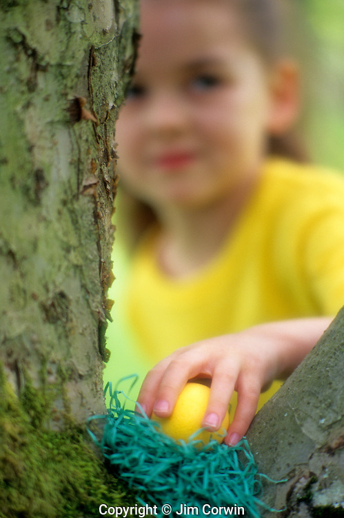 Girl ( 6 yrs old) looking for hidden eggs in backyard, with happy face on Easter Sunday, Issaquah, Washington USA    MR