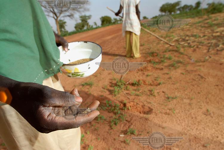 Local farmers sow millet seed in a field near Guidan Tanko village.