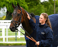 Many dreams with a stable lass in the winners enclosure during Afternoon Racing at Salisbury Racecourse on 18th May 2017