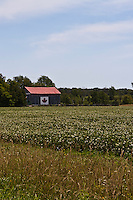 Canadian flag painted on the side of a barn under a bright blue sky.