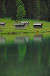 Cow shelter. Lake Visalpsee, Reutte district. Austria.