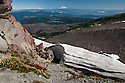 OR01658-00...OREGON - Mount Adams and Mount Rainier from the summit of the McNeil Point Trail in the Mount Hood Wilderness area.