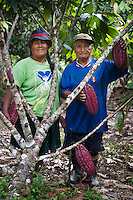 Juana Aliaga Luque and her husband Andres Parizaca photographed in her cacao farm near the town of Santa Rosa in the Madre de Dios region of Peru.
