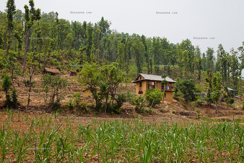 An overview of 19 year old Nisha Darlami's mother's house in Kalyan Village, Surkhet district, Western Nepal, on 30th June 2012. Nisha eloped with her step nephew when she was 13 but the couple used contraceptives for the next 6 years to delay pregnancy until she turned 18. Now 19, she has a one month old baby girl named Bushpa (flower). In Surkhet, StC partners with Safer Society, a local NGO which advocates for child rights and against child marriage. Photo by Suzanne Lee for Save The Children UK