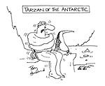 Tarzan of the Antarctic
