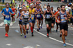 Annual New York City Marathon 2015
