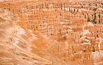 The dramatic incredible orange hoodoos of Bryce Canyon National Park, Utah.