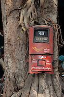 Agra, India.  Post Office Box on a Banyan Tree.