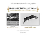 Two images by Michael Knapstein won Honorable Mention Awards in the Monochrome Awards, based in London, England.