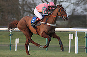 Ali Baba ridden by Ciaran McKee in action during the PointToPoint.co.uk Hunters Chase - Horse Racing at Huntingdon Racecourse, Cambridgeshire - 23/02/12- MANDATORY CREDIT: Gavin Ellis/TGSPHOTO - Self billing applies where appropriate - 0845 094 6026 - contact@tgsphoto.co.uk - NO UNPAID USE.