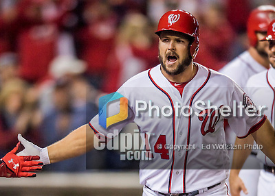 13 October 2016: Washington Nationals outfielder Chris Heisey returns to the dugout after hitting a two-run homer in the 7th inning of the NLDS Game 5 against the Los Angeles Dodgers at Nationals Park in Washington, DC. The Dodgers edged out the Nationals 4-3, to take Game 5, and the Series, 3 games to 2, moving on to the National League Championship against the Chicago Cubs. Mandatory Credit: Ed Wolfstein Photo *** RAW (NEF) Image File Available ***
