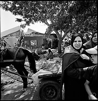former Morag settlement, Gaza strip, Sept 12 2005.Palestinians from nearby Rafah try to find anything still usable in the ruble from the settlers houses destroyed by the Israeli army.