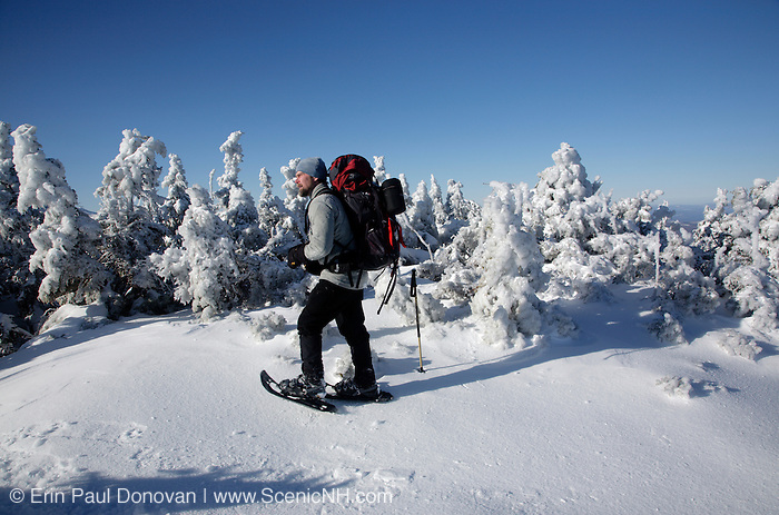Appalachian Trail - Snowshoer on the Carter-Moriah Trail in winter conditions near Middle Carter Mountain in the White Mountains, New Hampshire USA