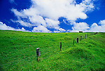 Pasture and fence at Parker Ranch, The Big Island, Hawaii USA
