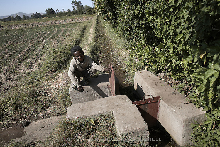 Irrigation channels at Awash Busholla village, Ethiopia. A network of channels can be opened and closed to get water to where it is needed most. To supply the area water is diverted from the Awash river through a canal. From the canal it is then pumped to a high point after which gravity takes over and the fields in the surrounding area receive water as required. The project provides food and income for 66 families, equalling approximately 300 people.