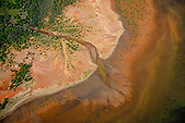 Embouchure de la Pwekue, zone de mangrove à la pointe d'Uunda, Ouaco, côte ouest Nouvelle-Calédonie