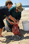 Smelt fishing in Half Moon Bay
