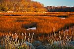 The Jones River Saltmarsh in Gloucester, MA, USA