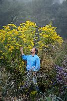 Dan standing next to Rudbeckia laciniata