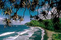 Pololu Valley and Pandamus palm trees, Big Island, Hawaii