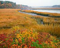 Tidal marsh on the Mousam River near Kennebunkport Maine