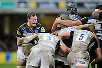 Chris Cook of Bath Rugby shouts out encouragement. Aviva Premiership match, between Bath Rugby and Wasps on February 20, 2016 at the Recreation Ground in Bath, England. Photo by: Patrick Khachfe / Onside Images