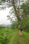 Woman birding on the Kuilau Ridge Trail, Lihue-Koloa Forest Reserve, Kauai, Hawaii