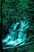 Wagner Falls located in Alger County near Munising in Michigan's Upper Peninsula.