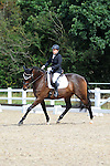 20/08/2016 - Class 3 - British Dressage - Brook Farm training centre