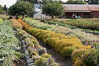 Viridian Farm - Oregon