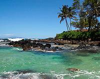 A sea turtle takes a peek at Secret Beach in Makena, Maui, Hawaii.