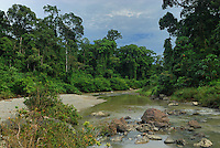Segama River in the lowland rainforest of the Danum Valley Conservation Area, Sabah, Borneo, Malaysia