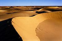 Gennaio 2009 .Campo Profughi Saharawi di Dakhla.Il deserto del Sahara vicino al campo profughi di Dakhla..January 2009.The Sahara desert near the refugee camp of Dakhla..