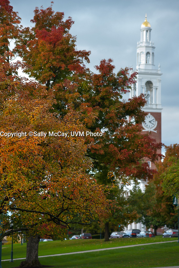 Fall Foliage on the UVM Green, Fall UVM Campus