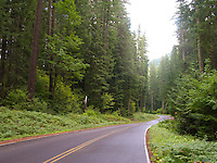 FS Rd. 46 from Detroit to Estacada