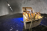 Seeds for cold storage in the Global Seed Vault, Svalbard, Norway