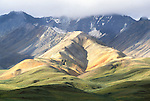 Polychrome Pass, Denali National Park, Alaska, USA