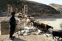 Shepherd and sheep on a destroy bridge the road to the Menar e Jam in the Ghor province - Afghanistan. .From western Afghan capital Herat to the former capital of the Ghorides Empire Fîrûzkôh, next to the Menar e Jam..-The full text reportage is available on request in Word format