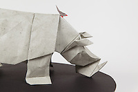 Origami rhino designed by Lionel Albertino folded by Talo Kawasaki. Origami Red-billed Oxpecker birds designed and folded by Talo Kawasaki.