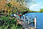 Belize tarpon shoot