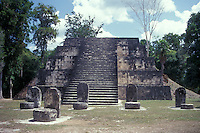 One of the twin pyramids at the Q-Complex, Maya ruins of Tikal, El Peten, Guatemala. Tikal is a UNESCO World Heritage Site....