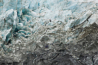 Franz Josef Glacier with group of guided tourists, New Zealand