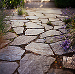 shimmering stone path with lavender edging