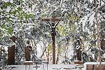 11.14.14 Snow Scenic 2.JPG by Matt Cashore/University of Notre Dame