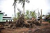 Trees were uprooted and house destroyed by cyclone Nargis near the city of Thanlyin, 70 kms east of Myanmar's main city Yangon, was devastated by cyclone Nargis when it hit the Irrawaddy delta on May 3 2008, killing tens of thousands. But no help has reached this village in days.