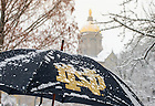 Feb. 1, 2015; Umbrella on a snowy day. (Photo by Matt Cashore/University of Notre Dame)