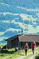 Ratikon, Vorarlberg, Austria, August 2010. Day 5 brings us down from the Lindauer Huette to the village of Latschau. A classical 5 day high alpine hiking tour goes up from the village of Brand to the Oberzalim hut, the Mannheimer hut, over the Schesaplana to the Totalp hut, past lake Lunersee to the Lindauer hut and out to the village of Latschau. Photo by Frits Meyst/Adventure4ever.com