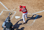 27 April 2014: Washington Nationals catcher Jose Lobaton in action against the San Diego Padres at Nationals Park in Washington, DC. The Padres defeated the Nationals 4-2 to to split their 4-game series. Mandatory Credit: Ed Wolfstein Photo *** RAW (NEF) Image File Available ***