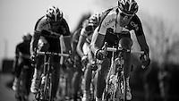 peloton speeding out of Cassel..74th Gent-Wevelgem (2012).236km between Deinze & Wevelgem.winner 2012: Tom Boonen..