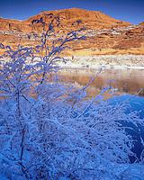 Snow along Colorado River, Arches National Park, Utah , Near Moab, Utah